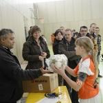 2012 Hoermann-Cup Hallenturnier
